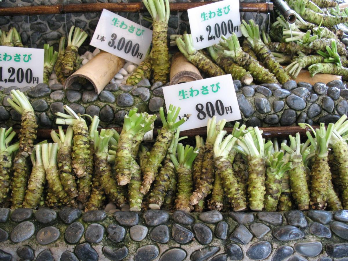wasabi: cenni storici