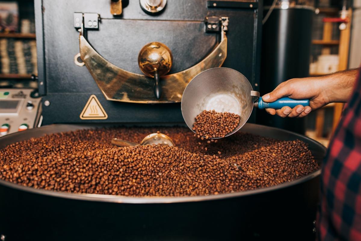 caffè: produzione