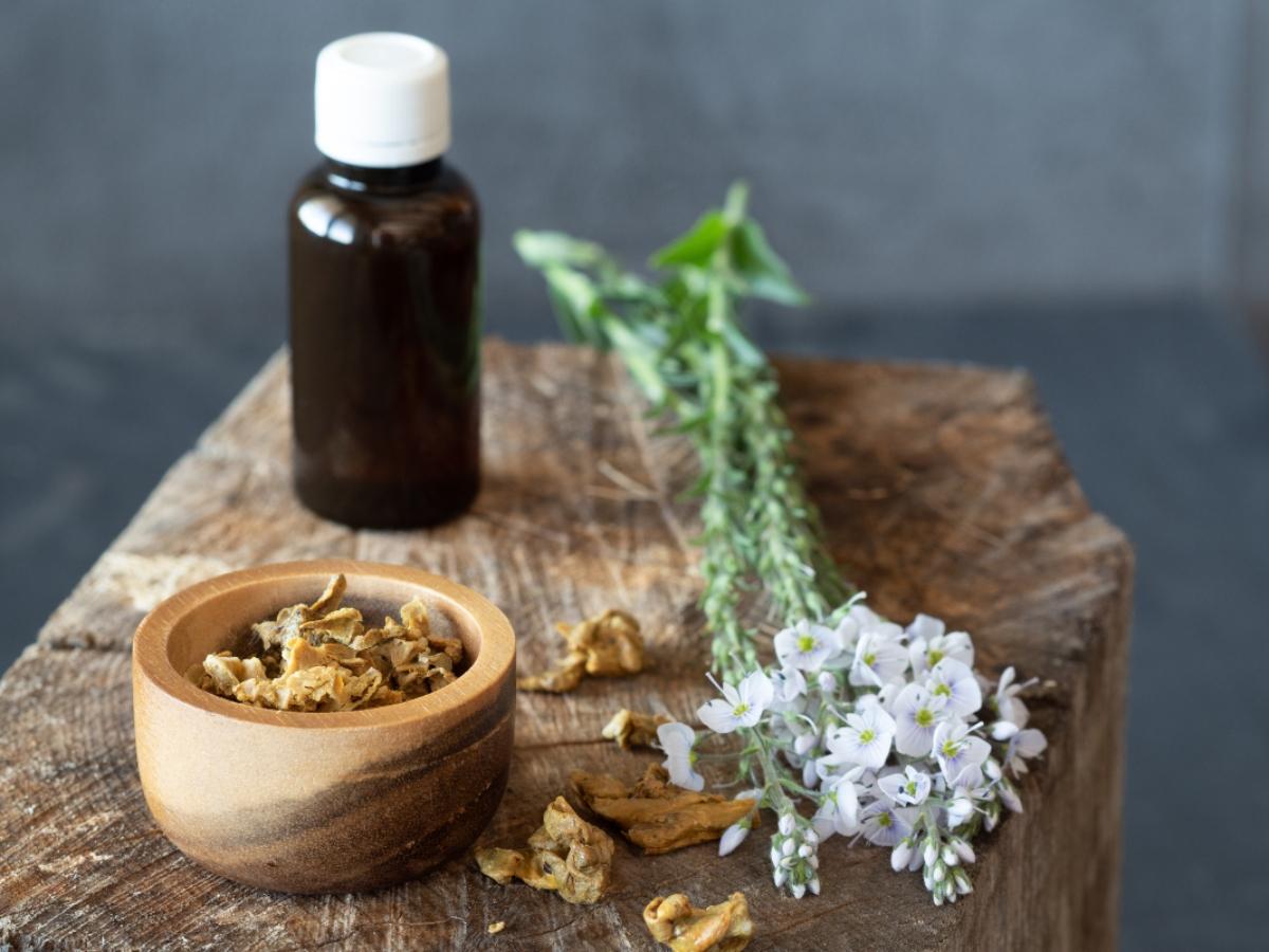 propoli, antibiotico naturale: proprietà, benefici, usi e controindicazioni