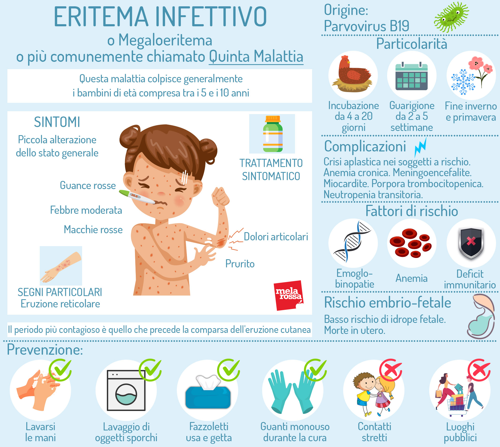 Quinta malattia: sintomi, origine. infografica