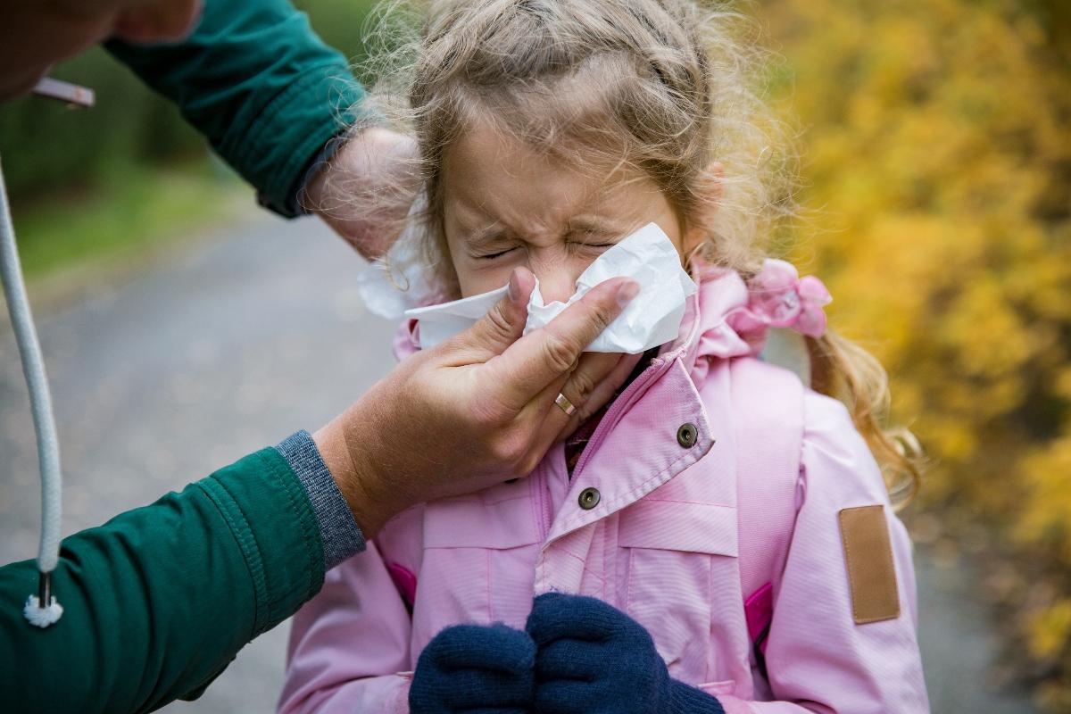 quinta malattia: contagio