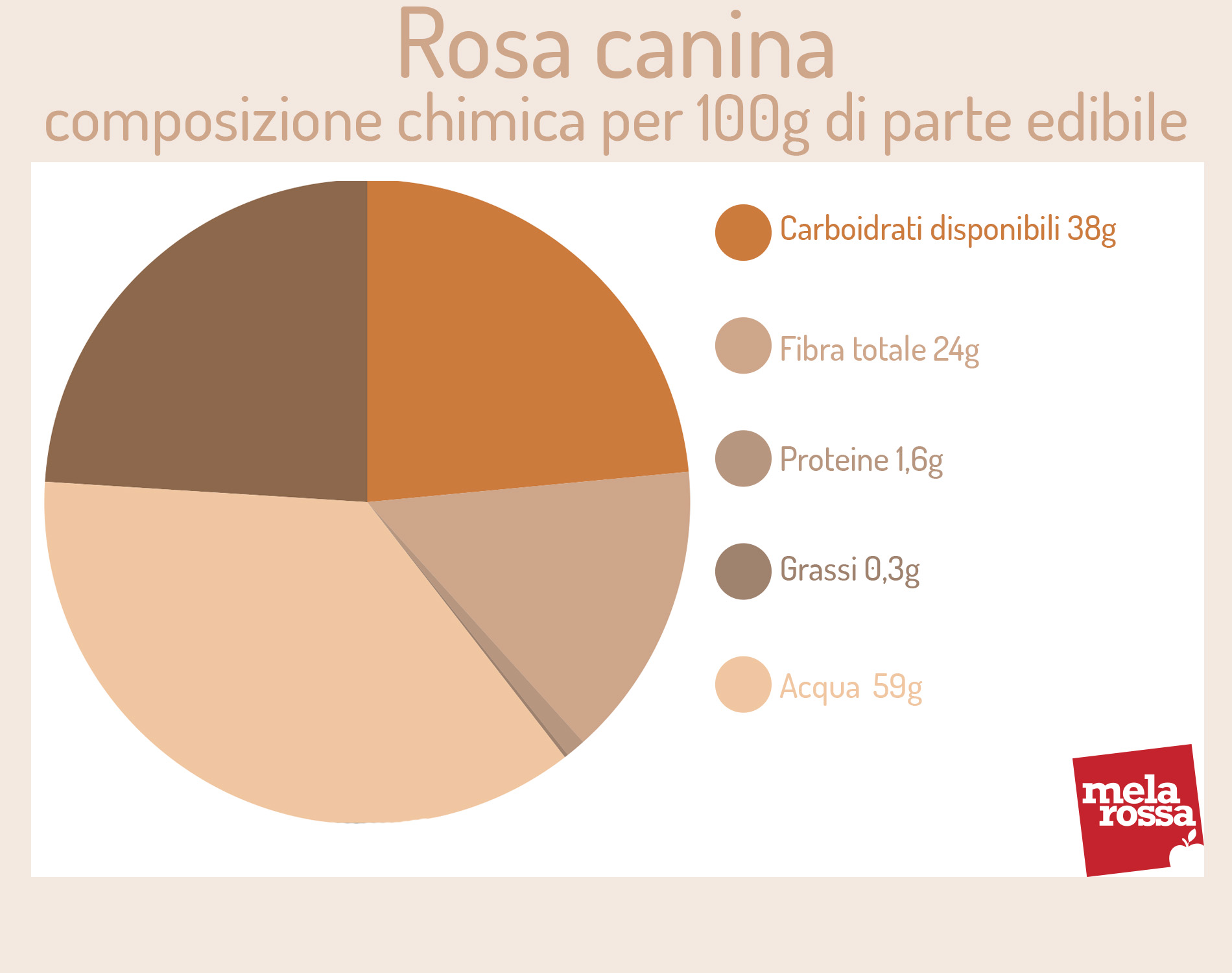 rosa canina: valori nutrizionali