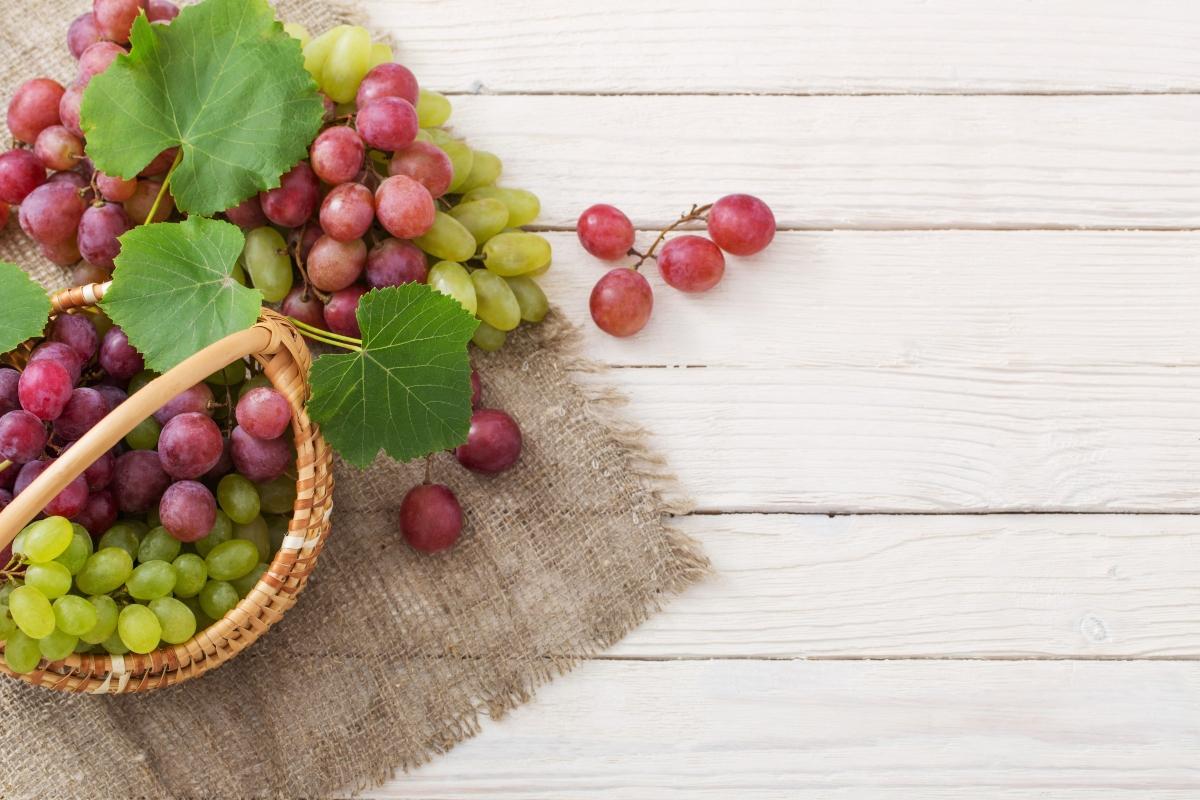uva bianca e nera: qual'è la differenza