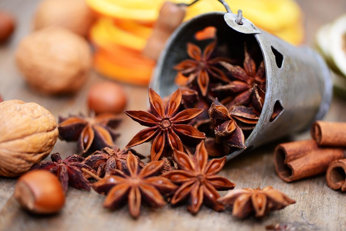 Anice stellato: cos'è, proprietà nutrizionali, benefici, usi e controindicazioni