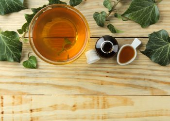 edera: benefici, proprietà, usi e come piantare in vaso la pianta
