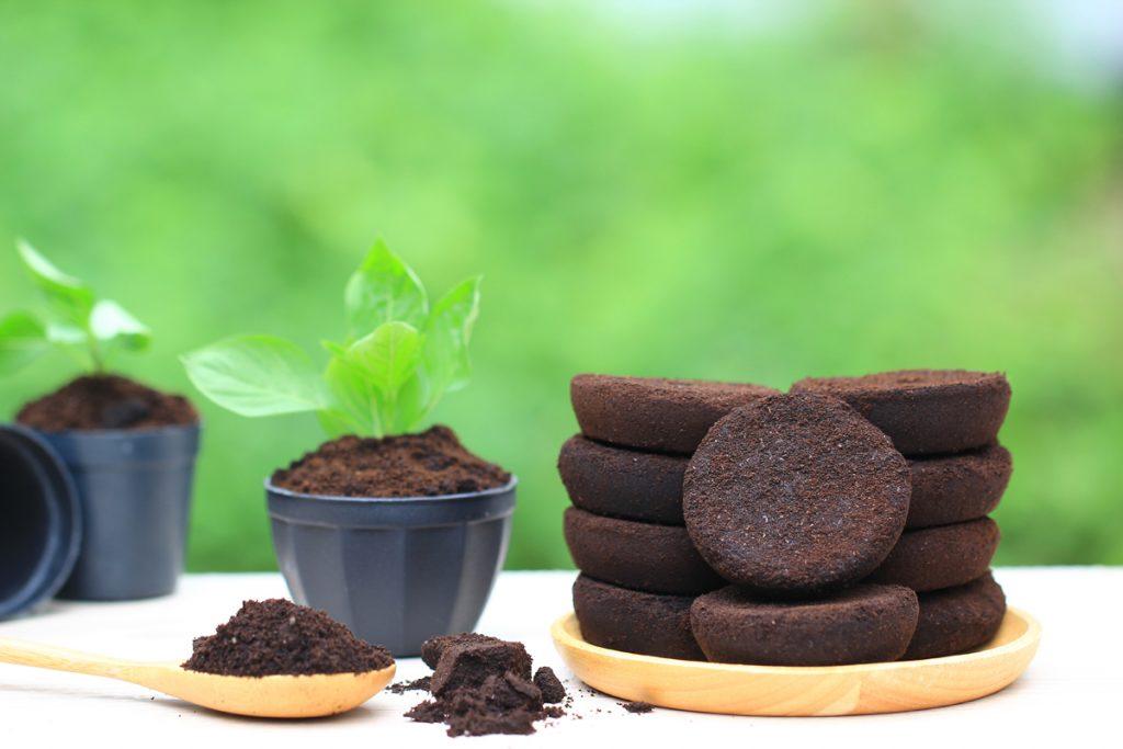 Fondi di caffè: 4 utilizzi per la casa e la beauty routine