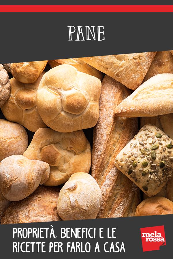 Pane, tipi, calorie, benefici e ricette