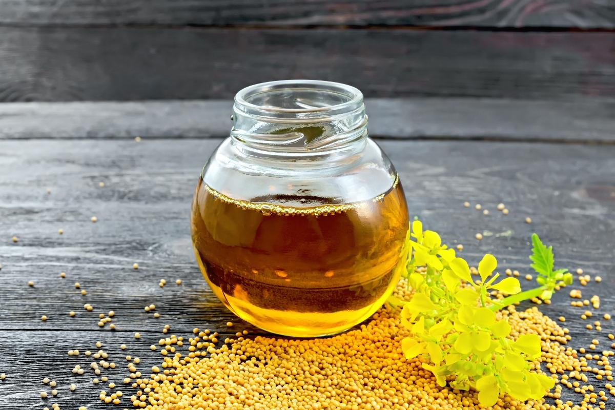 senape: olio