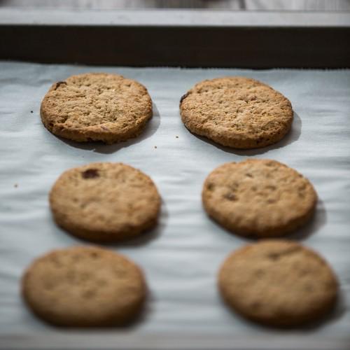 biscotti integrali allo yogurt