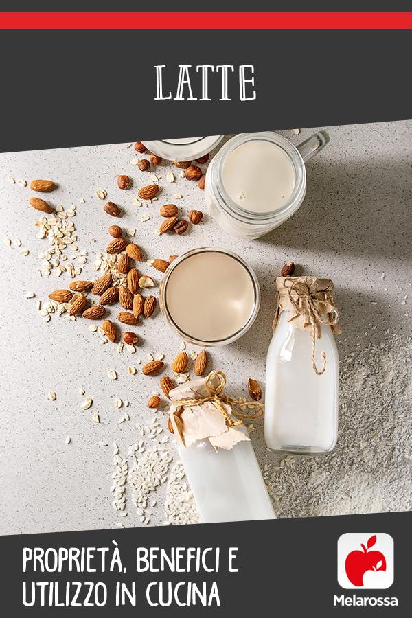 latte: cos'è, proprietà, benefici e usi in cucina