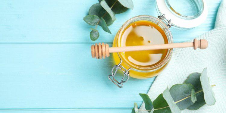 miele-eucalipto