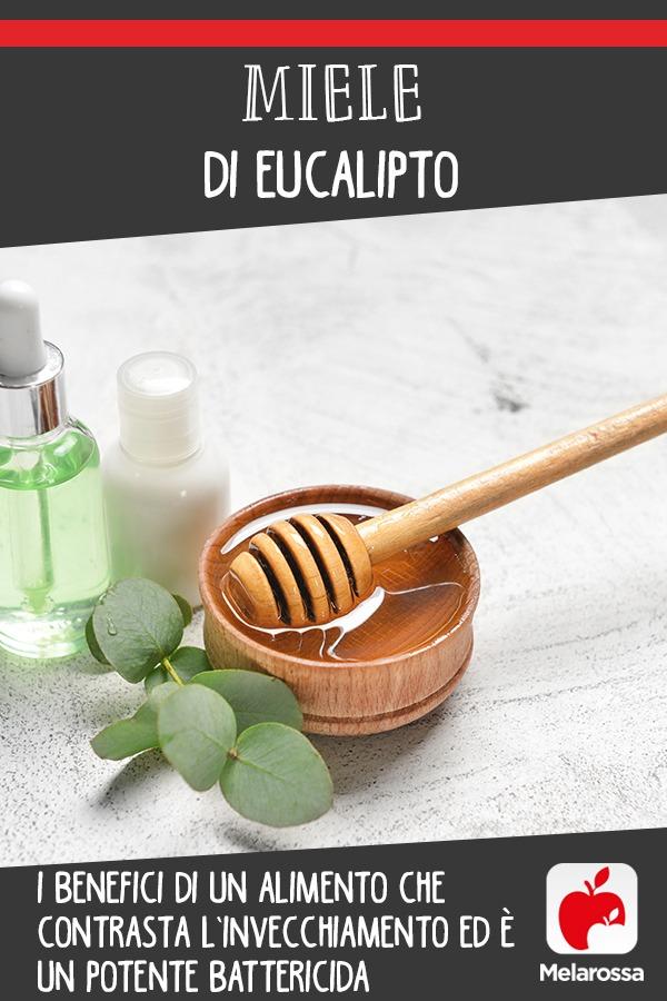 miele-eucalipto-benefici