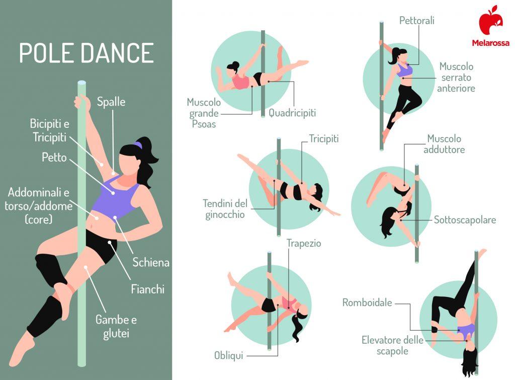 Pole dance: muscoli coinvolti