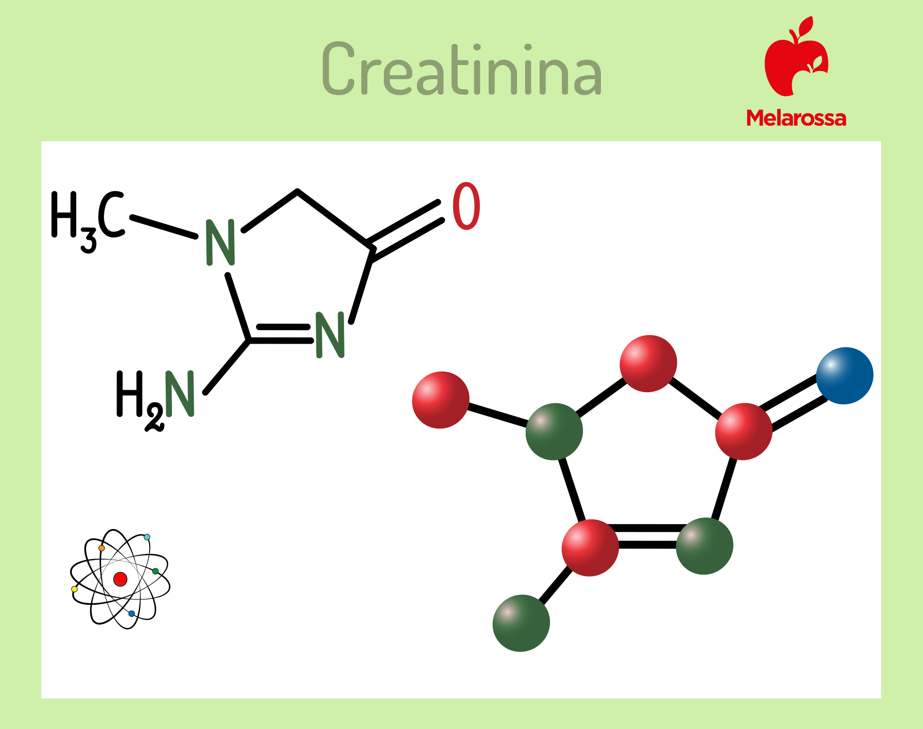creatinina: cos'è