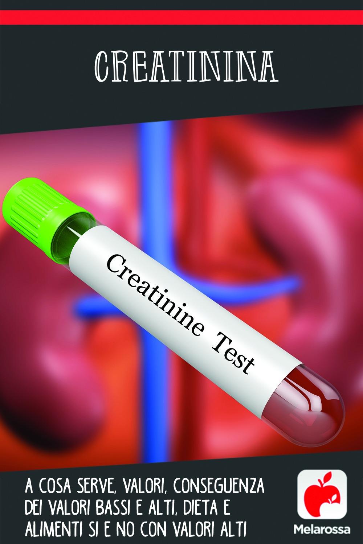 creatinina. cos'è a cosa serve, analisi del sangue e dieta quando i valori sono alti