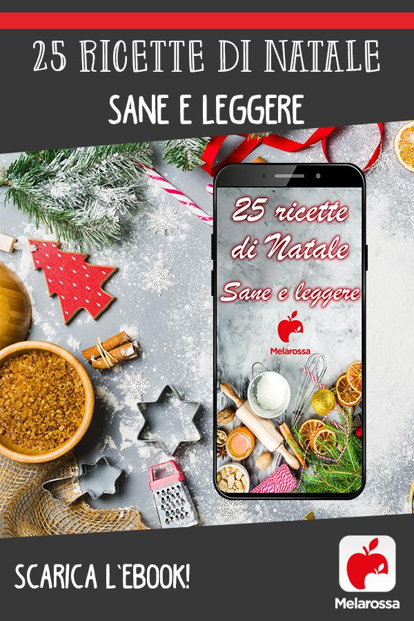 ebook ricette di Natale sane e leggere