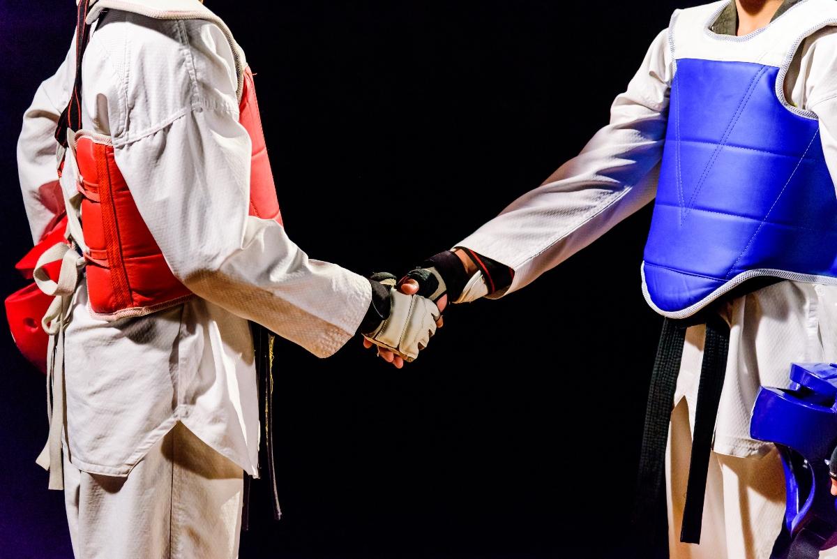 taekwondo: tecnica e regolamento gare
