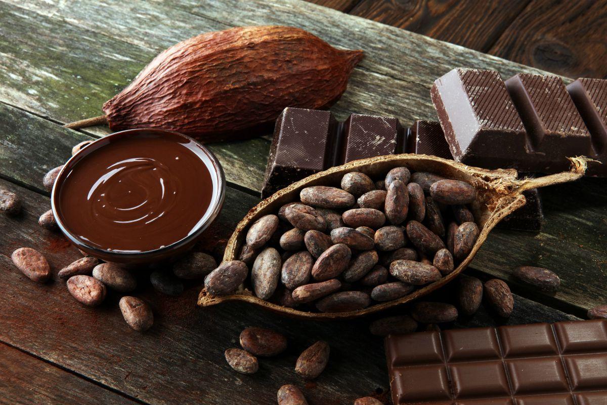 torta sacher: cioccolato fondente