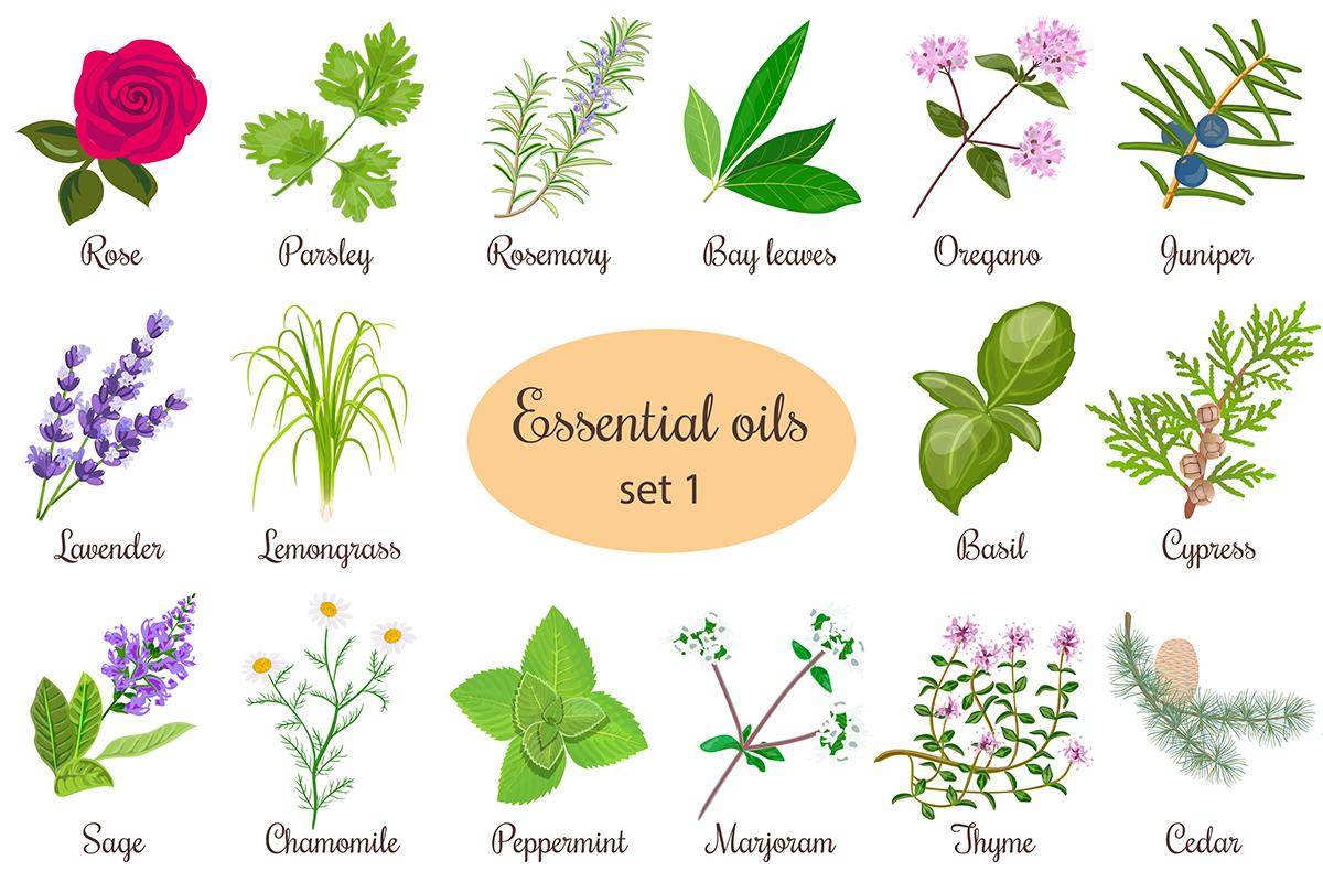 aromaterapia oli essenziali