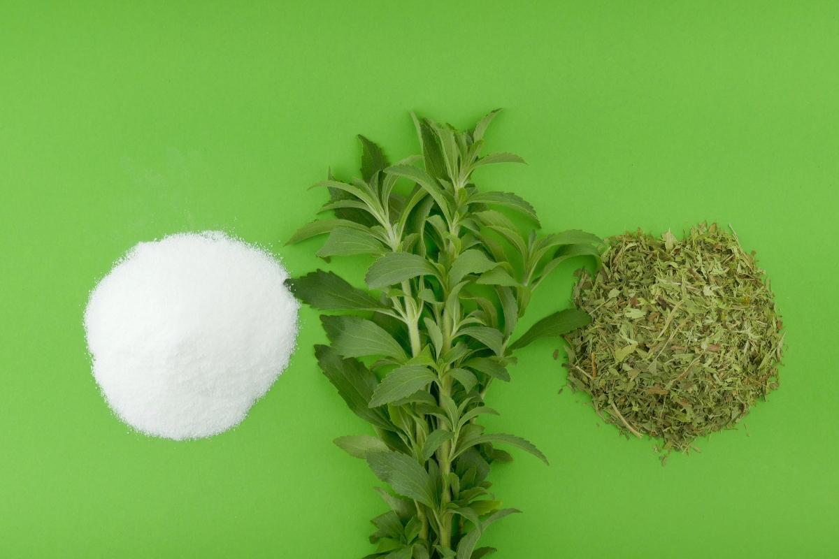 i benefici della stevia