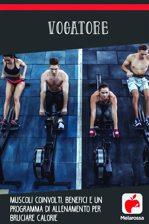 vogatore: muscoli, benefici, allenamento e programma per dimagrire