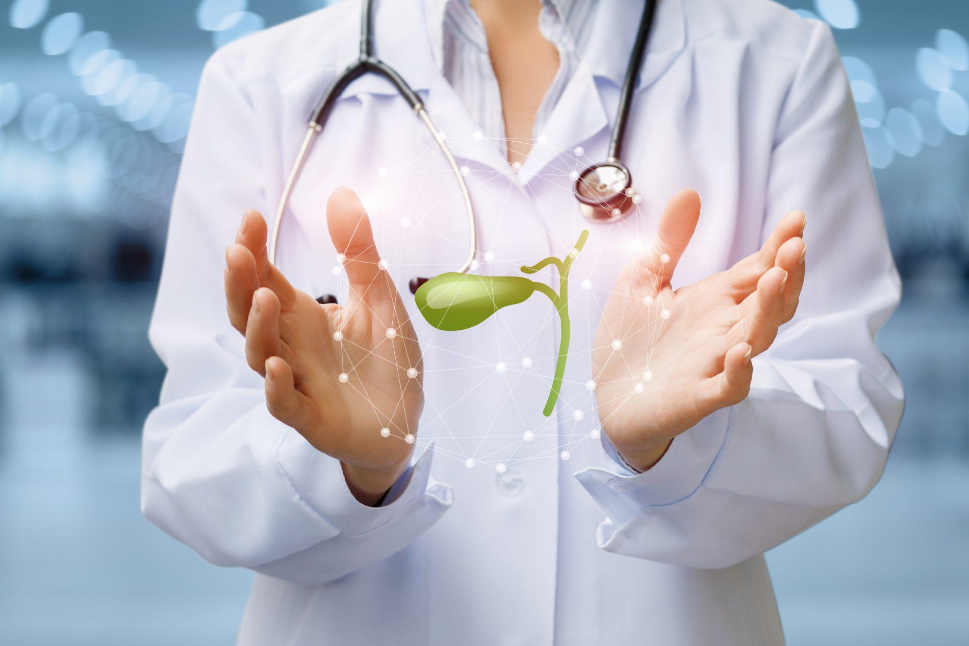 Cistifellea: cos'è, dove si trova e patologia