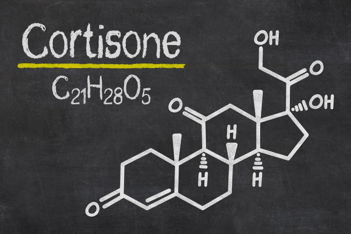 cortisone chimica