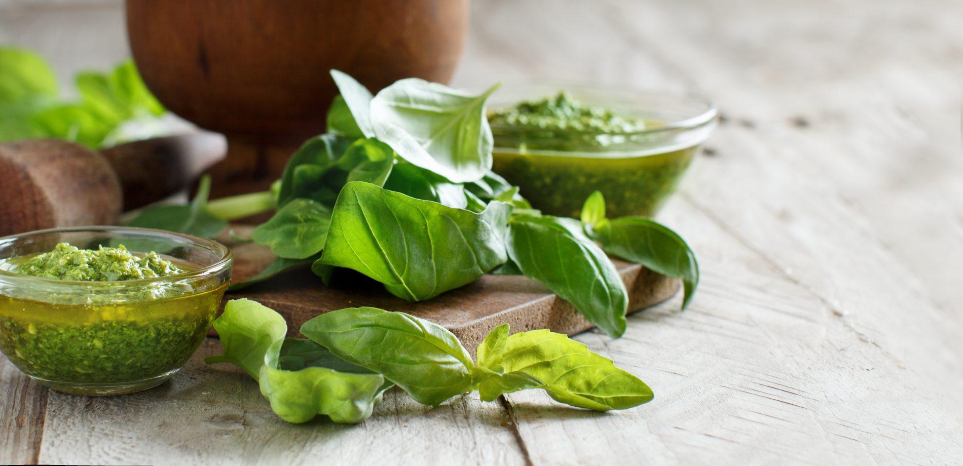 erbe aromatiche: basilico