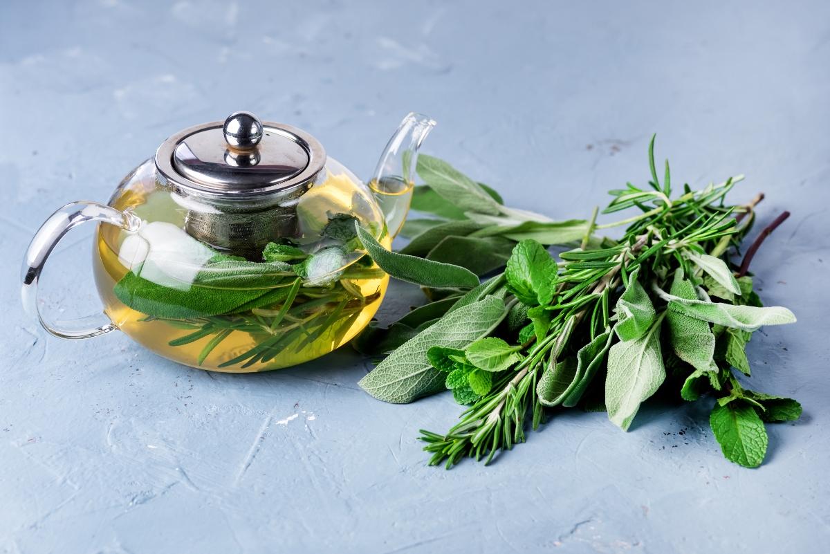 erbe aromatiche: salvia