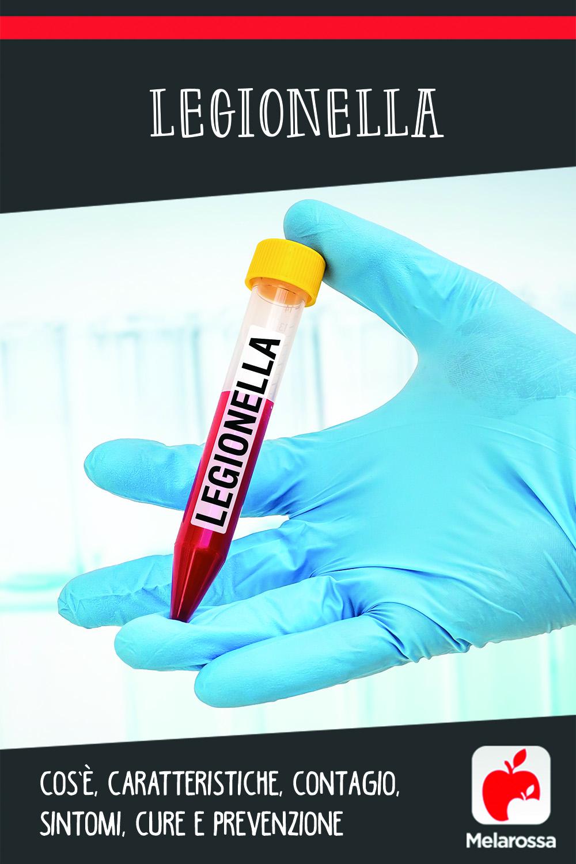 legionella: c'sè, cause, sintomi e cure