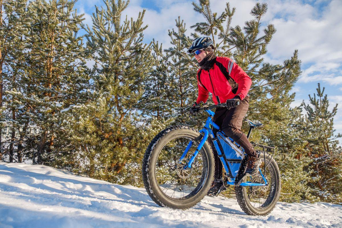 Migliori fat bike: neve