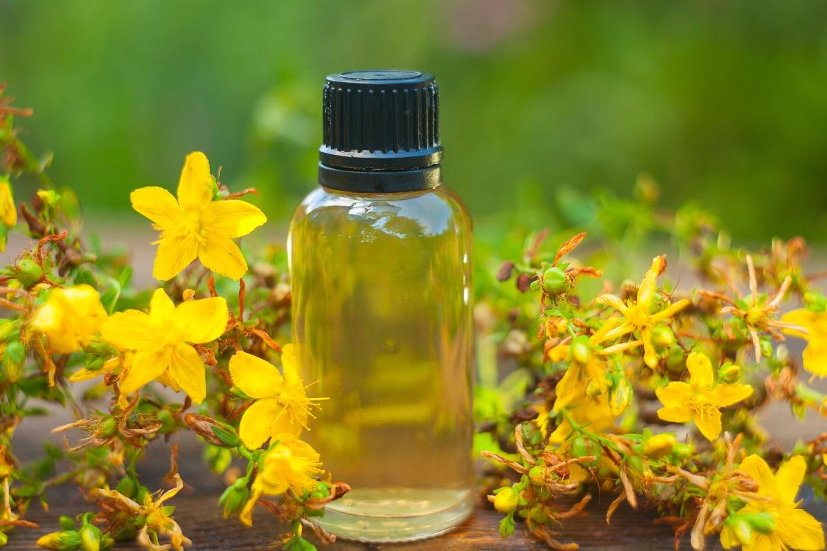 olio di iperico: benefici