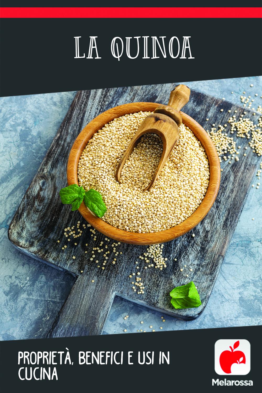 quinoa proprietà benefici usi in cucina