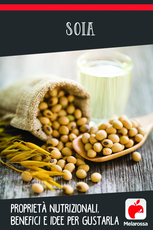 soia: cos'è, proprietà nutrizionali, benefici e ricette