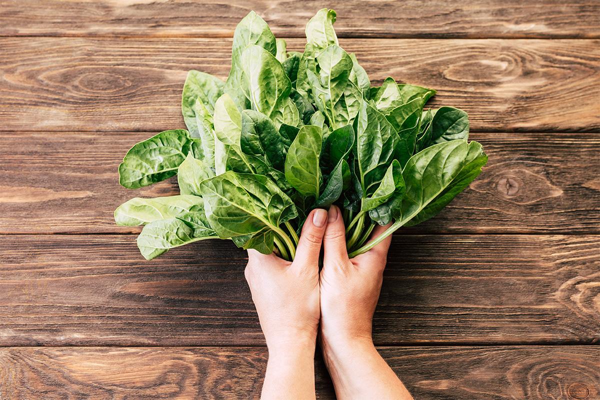 spinaci: guida all'acquisto