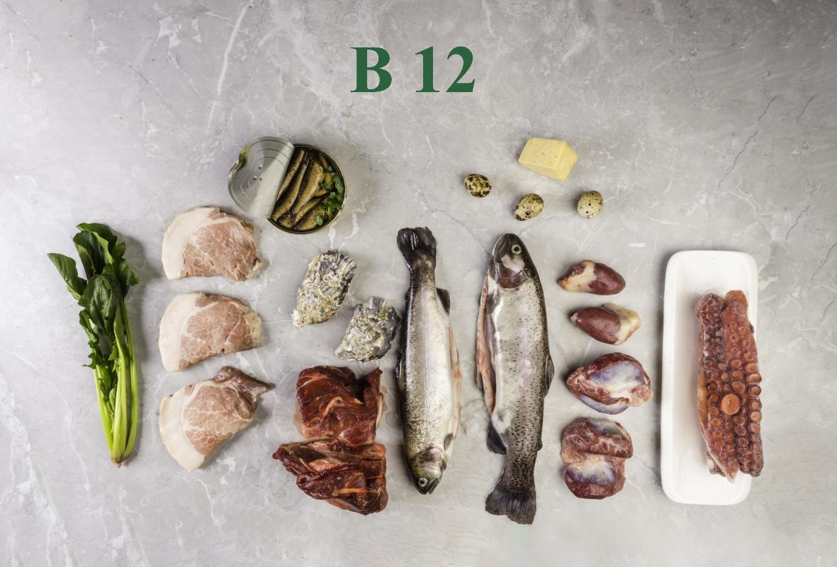vitamina B12: fabbisogno nutrizionale