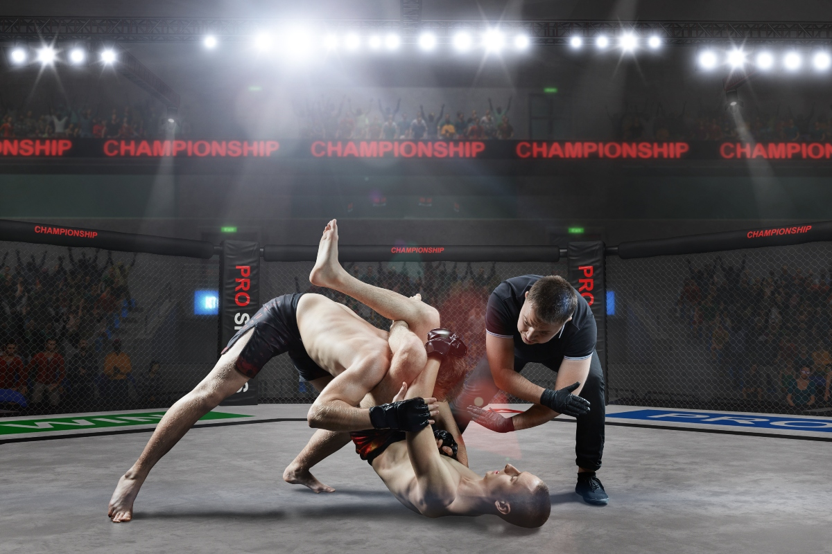 MMA: regolamento