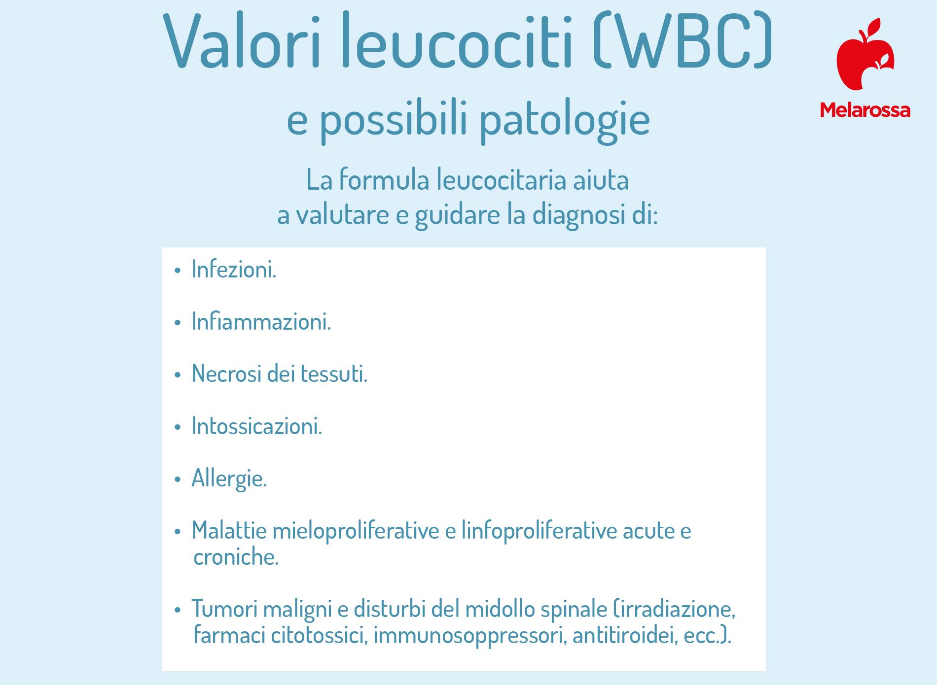 emocromo , valori leucociti e possibili patologie