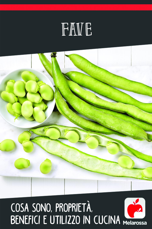 fave: cosa sono, benefici, valori nutrizionali e ricette