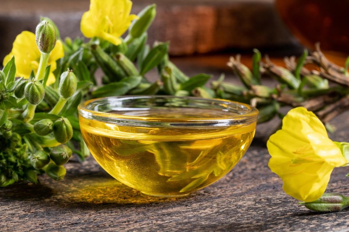 olio di enotera: come assumerlo