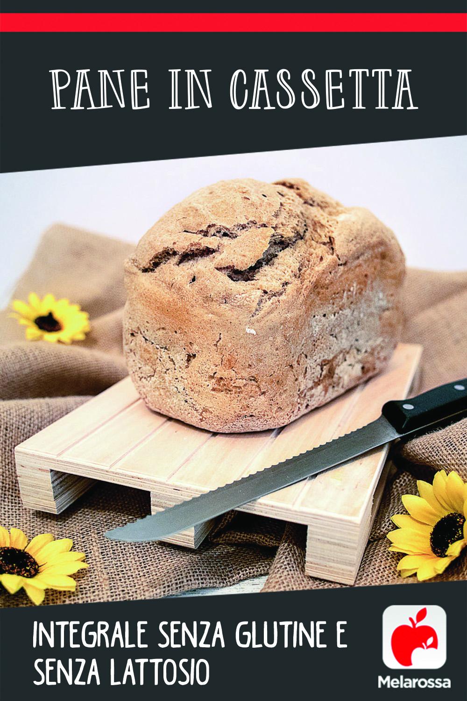 Pane in cassetta integrale senza glutine e senza lattosio