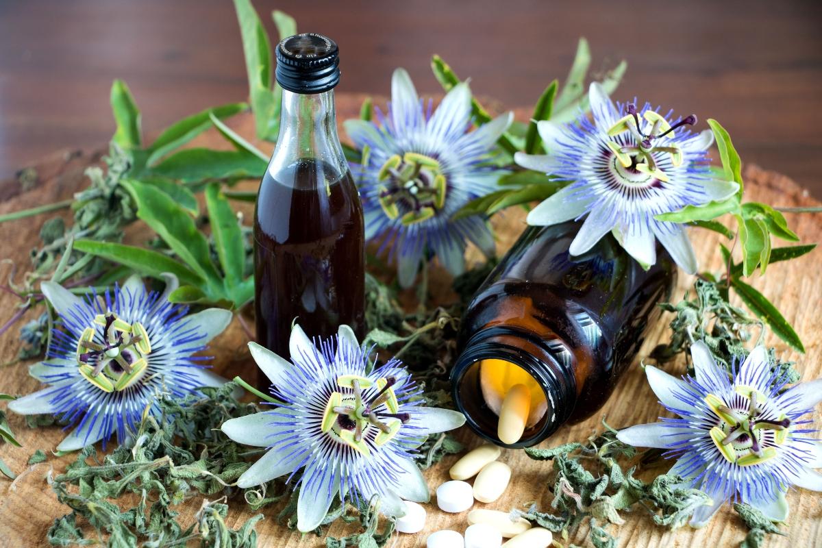 passiflora: cos'è, proprietà, benefici, usi e ricette