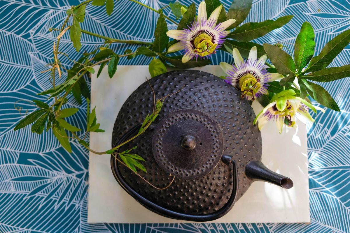 tisane a base di passiflora: ricette