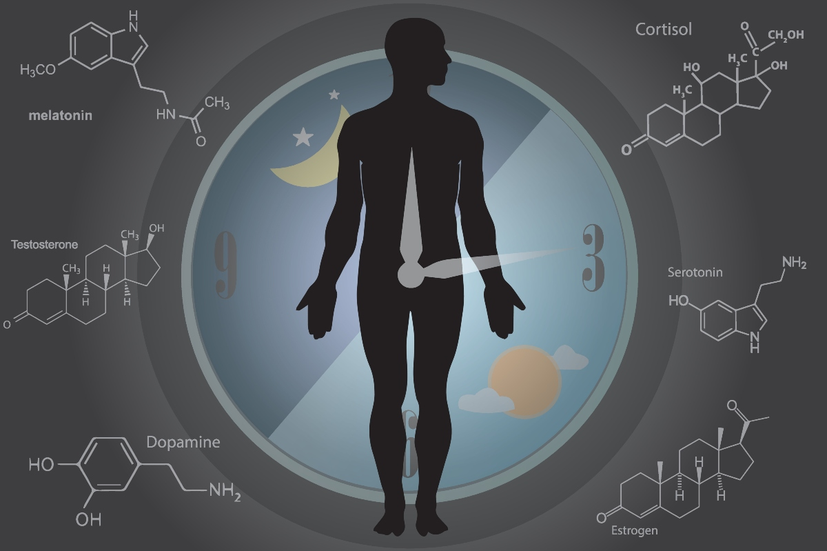 seratonina: effetti sull'organismo