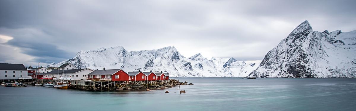 stoccafisso: merluzzo nordico