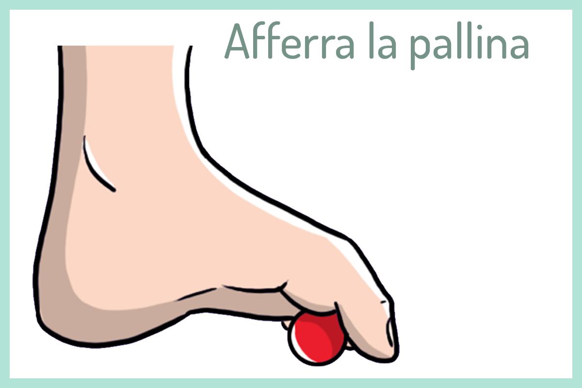 tallonite: esercizi con la pallina