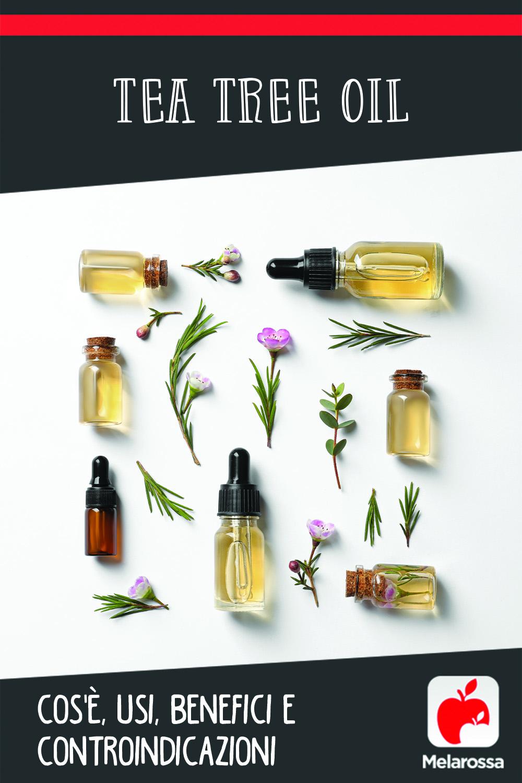 tea tree oil: cos'è, benefici per la pelle e viso, usi per la casa, controindicazioni, i migliori prodotti