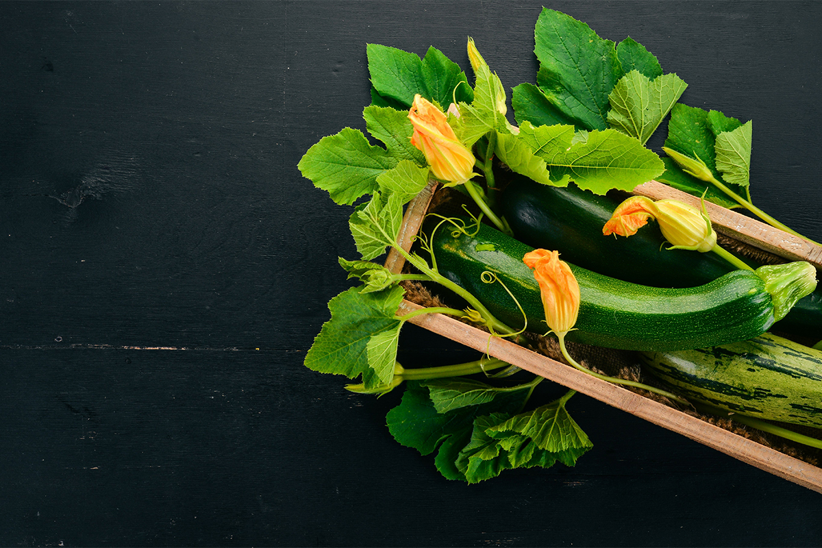 Zucchina: benefici