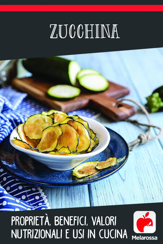 zucchina: proprietà, benefici, valori nutrizionali e usi in cucina