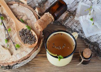 betulla: cos'è, benefici, ricette tisane e olio anticellulite